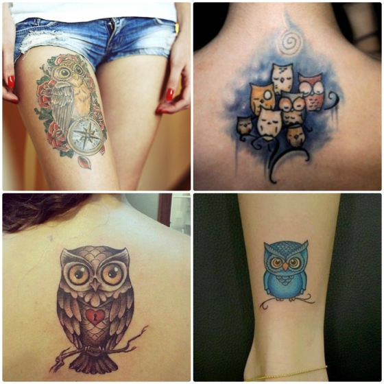 tattoo coruja 3